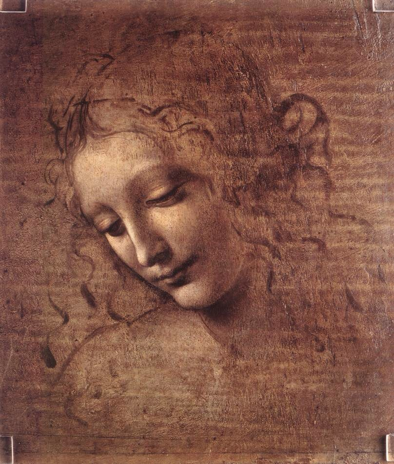 Head of a Young Woman with Tousled Hair By Da Vinci